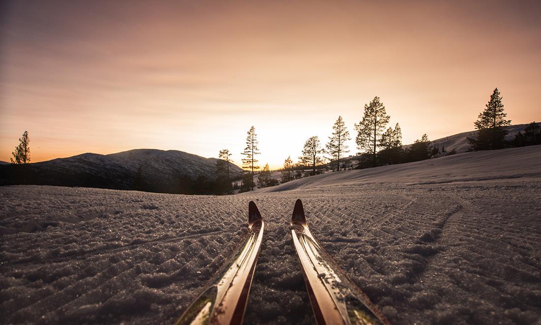 Langrennsløyper i verdensklasse om vinteren, turstier om sommeren.